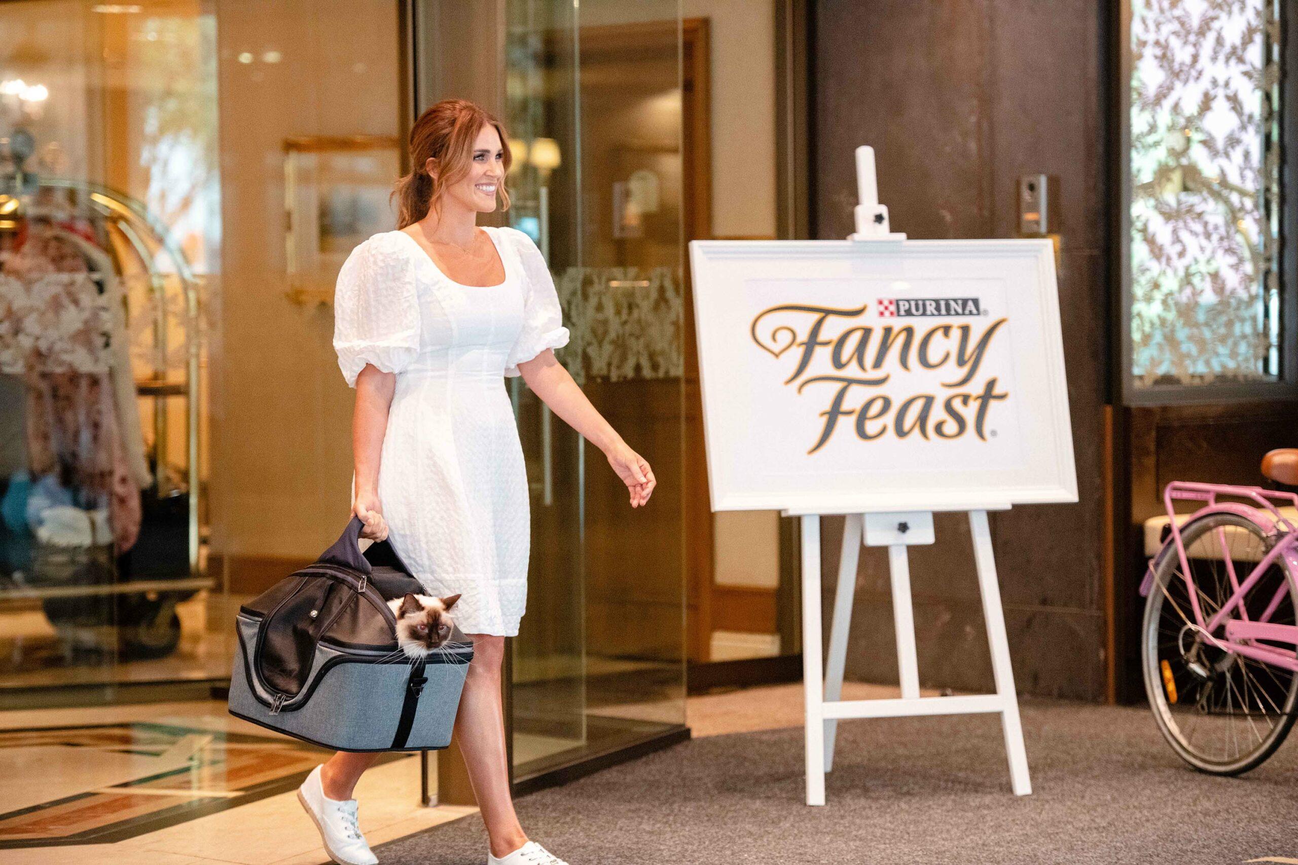 FANCY_FEAST_CAT_HOTEL_STILLS_YEAHSURE-18